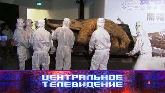 Выпуск от 2 октября 2021 года.Выпуск от 2 октября 2021 года.НТВ.Ru: новости, видео, программы телеканала НТВ