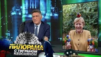 2октября 2021года.2октября 2021года.НТВ.Ru: новости, видео, программы телеканала НТВ