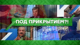Выпуск от 5октября 2021года.Под прикрытием?!НТВ.Ru: новости, видео, программы телеканала НТВ