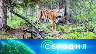 12октября 2021года. 13:00.12октября 2021года. 13:00.НТВ.Ru: новости, видео, программы телеканала НТВ
