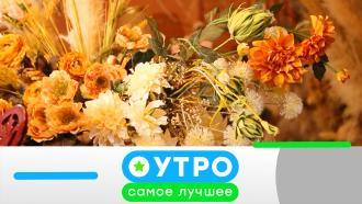 18октября 2021года.18октября 2021года.НТВ.Ru: новости, видео, программы телеканала НТВ