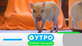 21 октября 2021 года.21 октября 2021 года.НТВ.Ru: новости, видео, программы телеканала НТВ