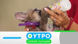 27 октября 2021года.27 октября 2021года.НТВ.Ru: новости, видео, программы телеканала НТВ