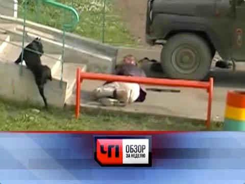«ЧП. Обзор за неделю». Анонс на 8июля 2012года.жертвы, оружие, собаки, юристы.НТВ.Ru: новости, видео, программы телеканала НТВ