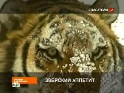 Повтор от 2декабря 2011года.«Звериный аппетит».НТВ.Ru: новости, видео, программы телеканала НТВ