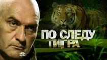 По следу тигра