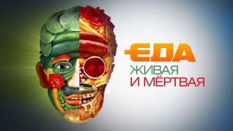 Еда живая и мёртваяНаучно-кулинарный проект Сергея Малозёмова
