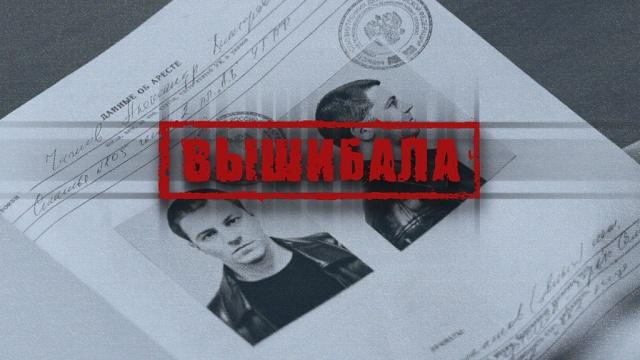 Вышибала.НТВ.Ru: новости, видео, программы телеканала НТВ