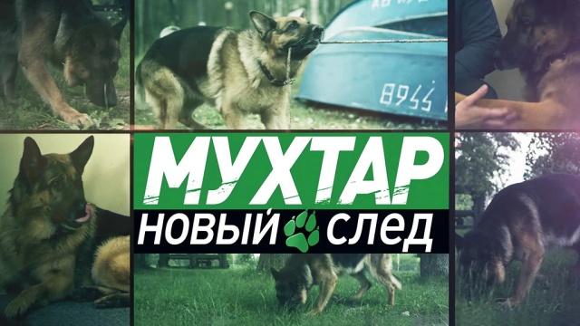 Мухтар. Новый след.НТВ.Ru: новости, видео, программы телеканала НТВ