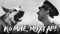 Ко мне, Мухтар!