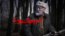 Дед Морозов